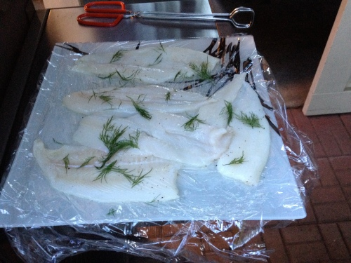 Fish is Ready for Grillin'