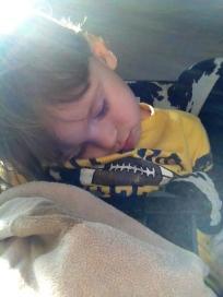 Snoozing Bosco