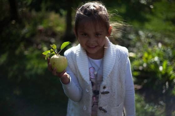 Maya Picking Apples